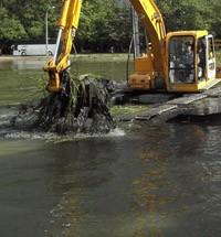 Очистка прудов в Москве и области